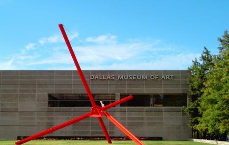 Dallas Museum Of Art Image