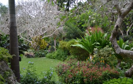 Andromeda Botanic Gardens, Bathsheba