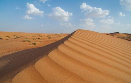 Wahiba Sands Image