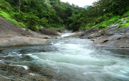 Kozhippara Water Falls, Calicut