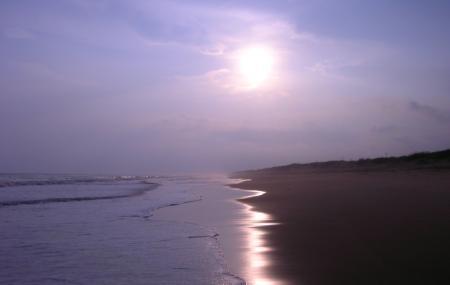Chandrabhaga Sea Beach, Konark