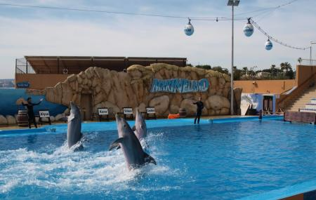 Hotels Near Marineland Mallorca