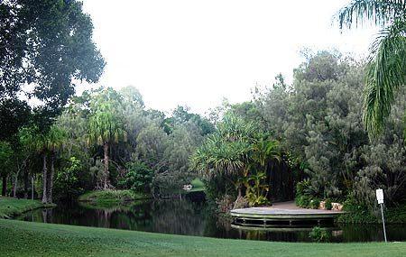 Hervey Bay Botanical Gardens Image