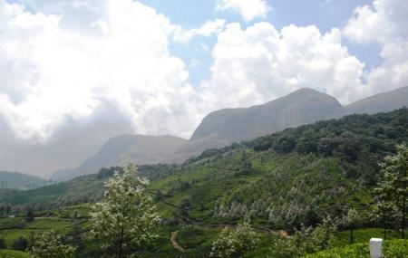 Anamudi Peak Image