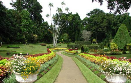 Royal Botanical Gardens, Port Of Spain
