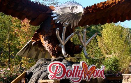 Dollywood Image