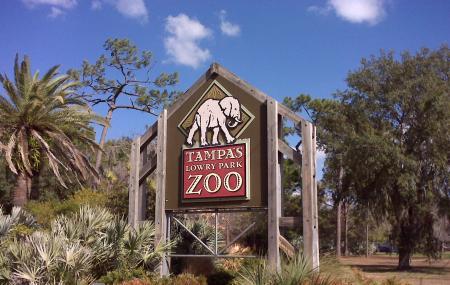 Lowry Park Zoo Image