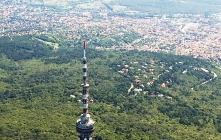 Television Tower Image