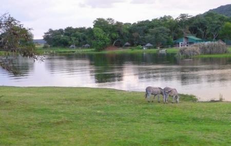 Lake Chivero Recreational Park, Harare
