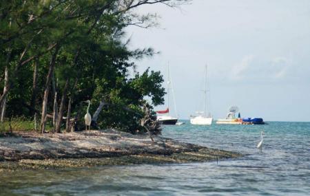 Wisteria Island, Key West