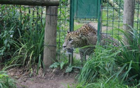 Zoo De Santillana, Santillana Del Mar