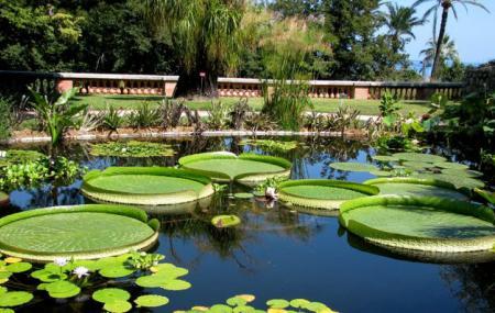 Jardin Botanique Et Exotique Val Rahmeh, Menton