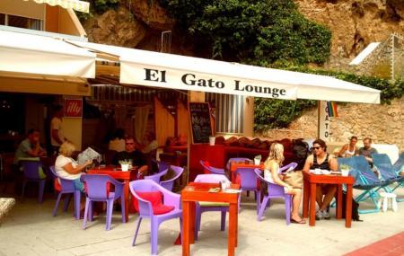 El Gato Lounge, Torremolinos