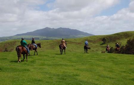 Magic Mountain Horse Treks Image
