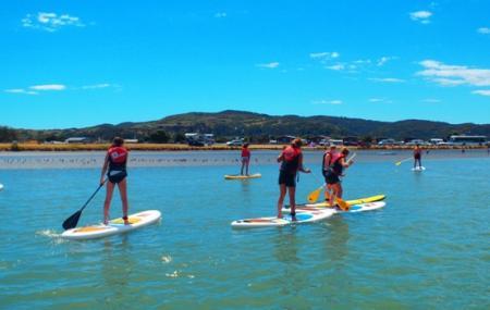 Raglan Paddle-boarding, Raglan