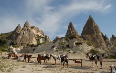 Horseback Riding Image
