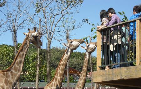 Dalian Forest Zoo, Dalian
