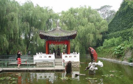 Xiangshui Temple Image