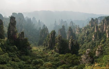 Zhangjiajie National Forest Park Image