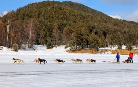 Baikal Dog Sledding Centre Image