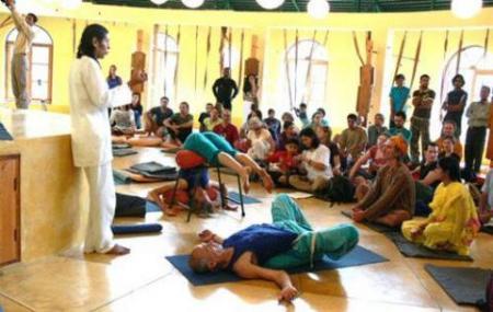 Himalayan Iyengar Yoga Centre Image
