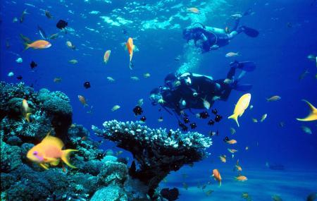 Snorkeling And Diving, Miri