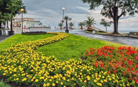 Sea Garden Image