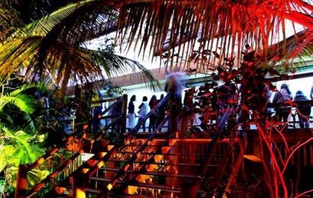 Ilha Dos Aquarios Image