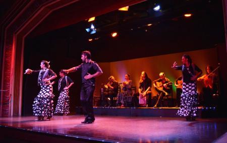 Palacio Del Flamenco Image