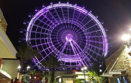 The Orlando Eye Image