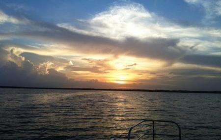 Lake Jesup Image