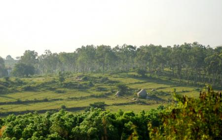 Turahalli Forest Image