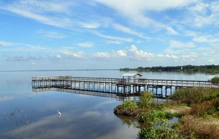 Lake Apopka Image