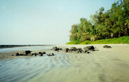 Kihim Beach, Alibag