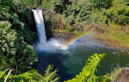 Keezharkuthu Falls Image