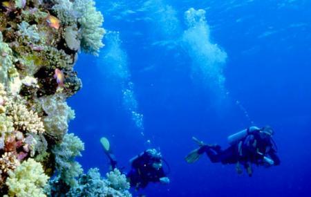 Scuba Diving At Bunaken, Manado