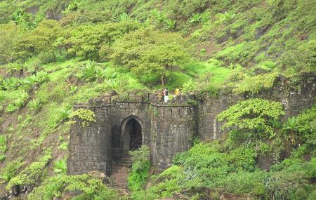 Sinhagad Fort Image