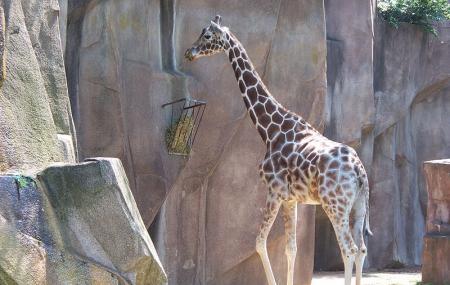 Milwaukee County Zoo Image