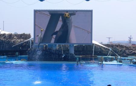 Port Of Nagoya Public Aquarium, Nagoya-shi