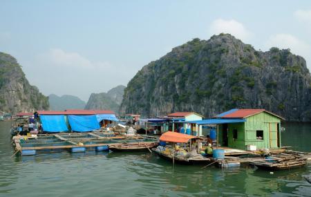 Cua Van Floating Village, Ha Long Bay