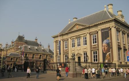 Mauritshuis Image