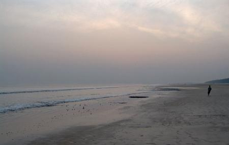 Shankarpur Beach, Digha