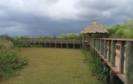 Miccosukee Indian Village, Miami