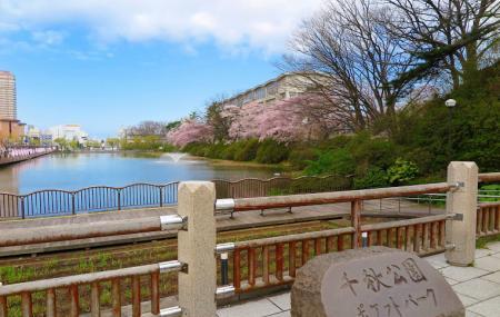 Senshu Park , Akita