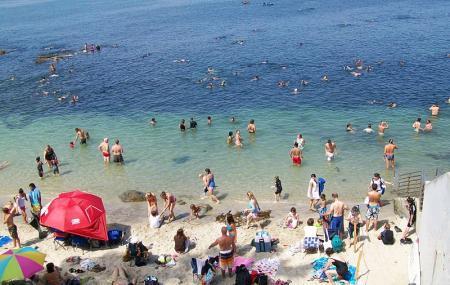 La Jolla Cove Image