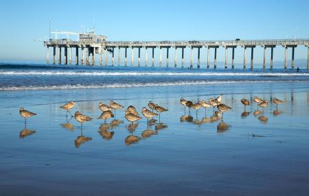La Jolla Shores, San Diego