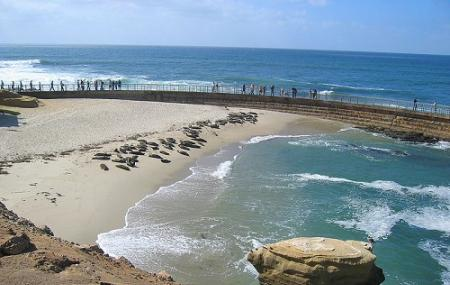 Children's Pool Beach, San Diego