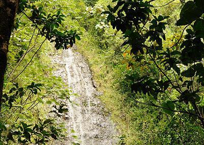 Manoa Falls, Honolulu