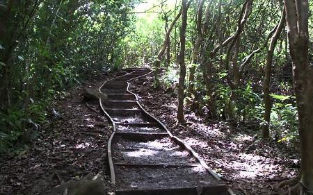Maunawili Falls Trail, Honolulu