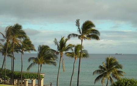 Kakaako Waterfront Park, Honolulu